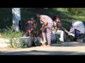 Embedded thumbnail for Женщина транспортирует пьяного десантника